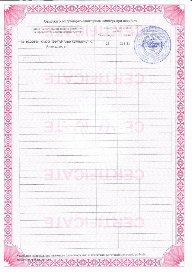 Сертификат на форель 1